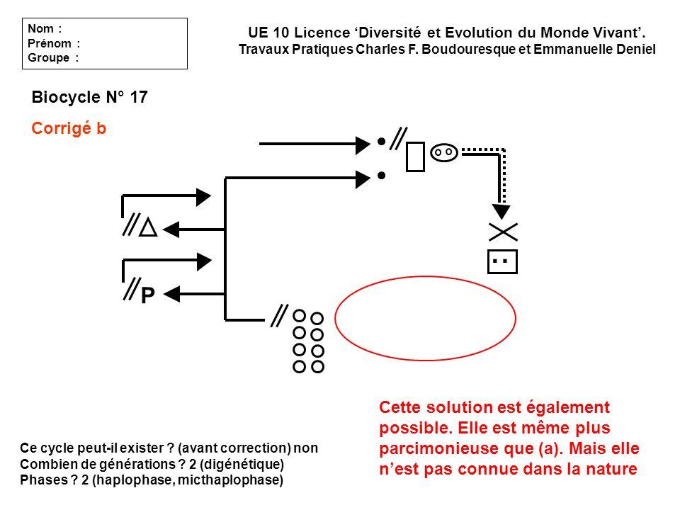 Ce cycle peut-il exister ? (avant correction) non Combien de générations ? 2 (digénétique) Phases ? 2 (haplophase, micthaplophase) UE 10 Licence Diver
