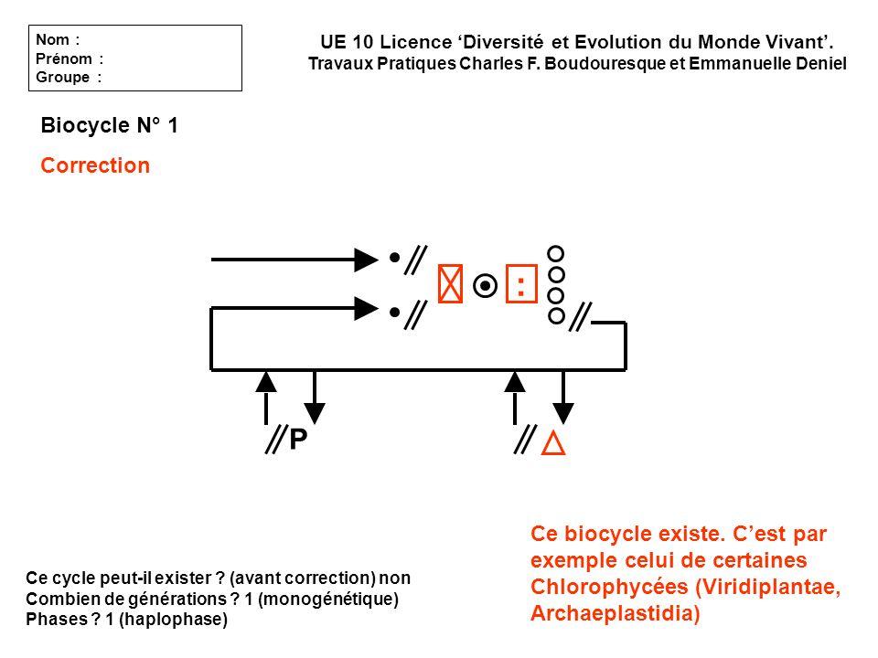 Ce cycle peut-il exister ? (avant correction) non Combien de générations ? 1 (monogénétique) Phases ? 1 (haplophase) Biocycle N° 1 Correction UE 10 Li