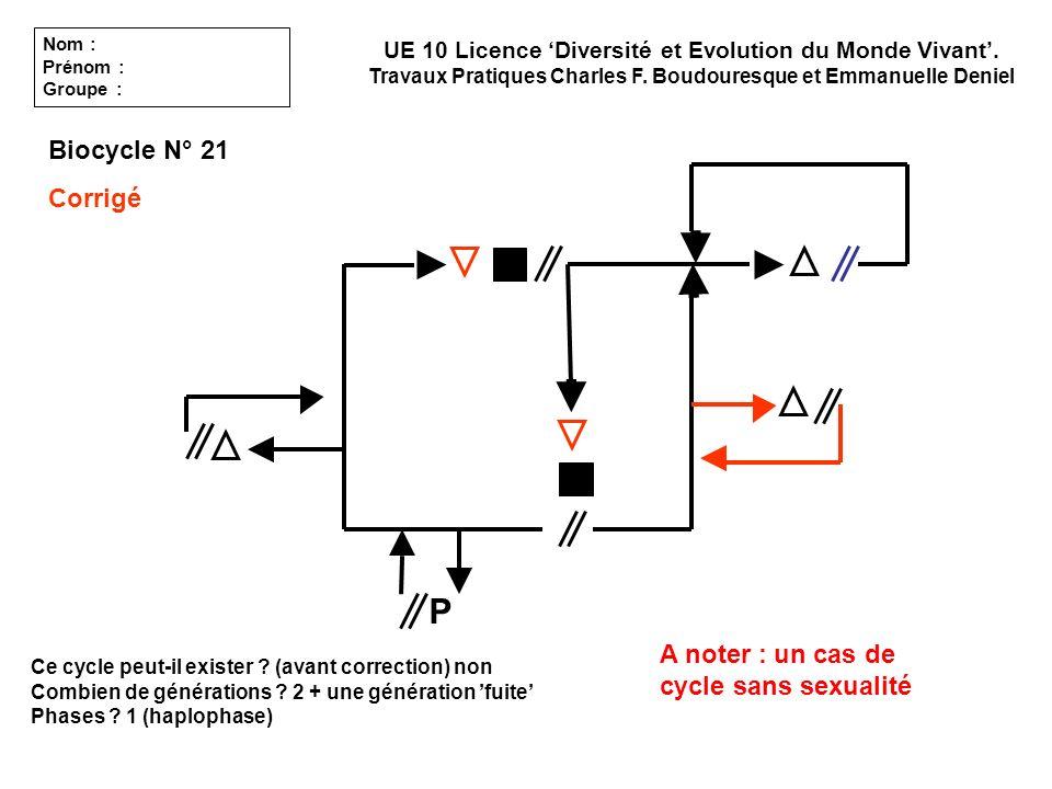 Ce cycle peut-il exister ? (avant correction) non Combien de générations ? 2 + une génération fuite Phases ? 1 (haplophase) UE 10 Licence Diversité et