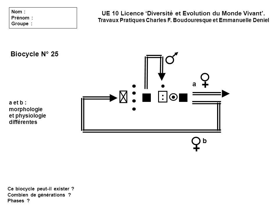 Biocycle N° 25 Ce biocycle peut-il exister ? Combien de générations ? Phases ? a b a et b : morphologie et physiologie différentes UE 10 Licence Diver