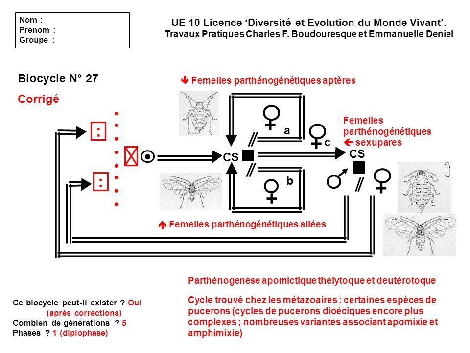 CS a b c Nom : Prénom : Groupe : UE 10 Licence Diversité et Evolution du Monde Vivant. Travaux Pratiques Charles F. Boudouresque et Emmanuelle Deniel