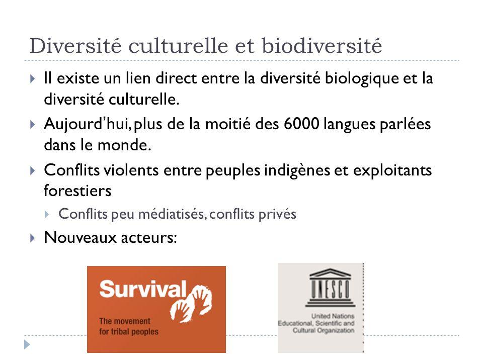 Diversité culturelle et biodiversité Il existe un lien direct entre la diversité biologique et la diversité culturelle. Aujourdhui, plus de la moitié