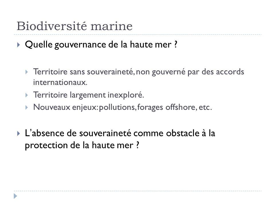 Biodiversité marine Quelle gouvernance de la haute mer ? Territoire sans souveraineté, non gouverné par des accords internationaux. Territoire largeme
