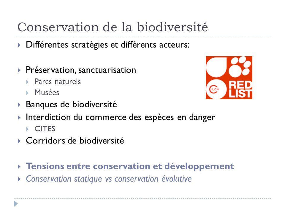 Conservation de la biodiversité Différentes stratégies et différents acteurs: Préservation, sanctuarisation Parcs naturels Musées Banques de biodivers