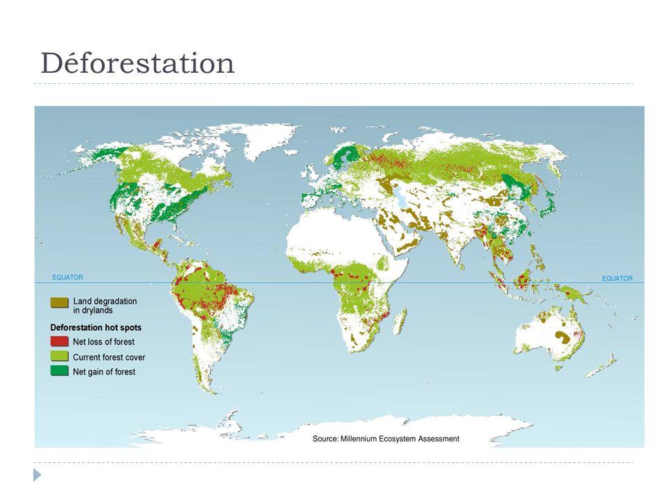 Enjeu à la fois pour la biodiversité et pour le climat Forêts tropicales comme ressources nationales ou biens publics mondiaux .