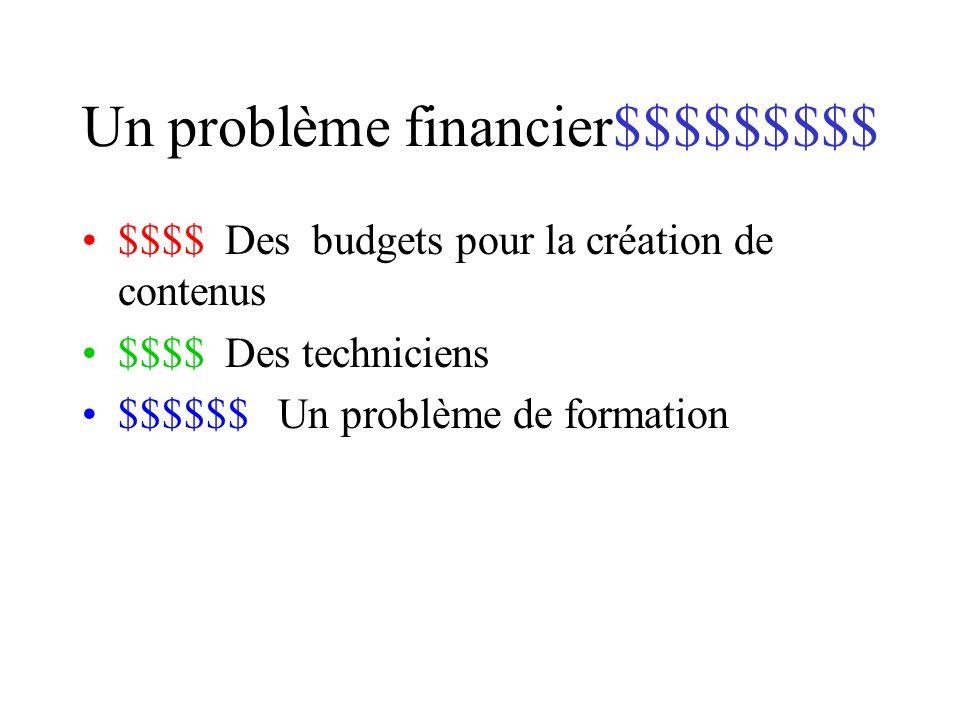 Un problème financier$$$$$$$$$ $$$$ Des budgets pour la création de contenus $$$$ Des techniciens $$$$$$ Un problème de formation