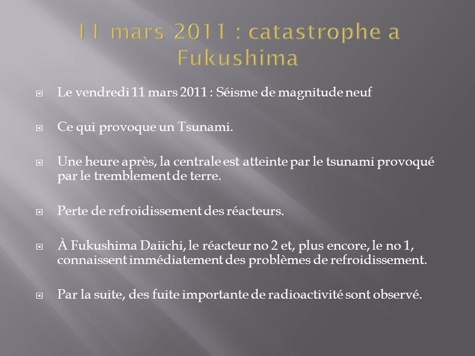 Le vendredi 11 mars 2011 : Séisme de magnitude neuf Ce qui provoque un Tsunami.