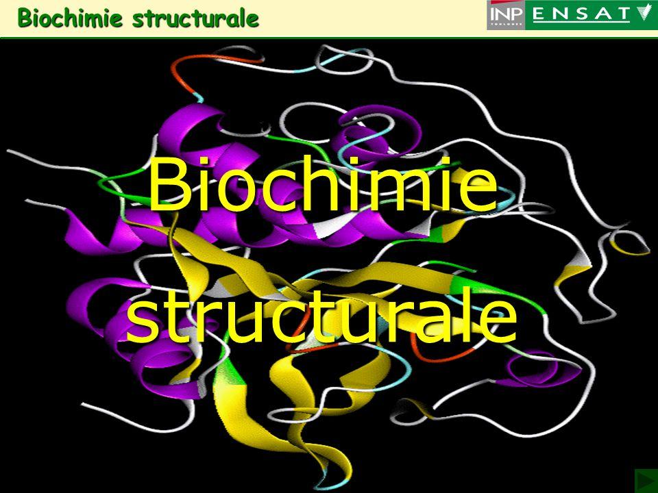 1 Biochimie structurale Biochimie structuraleBiochimiestructurale
