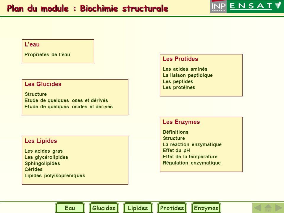 Plan du module : Biochimie structurale Plan du module : Biochimie structurale Leau Propriétés de leau Les Glucides Structure Etude de quelques oses et