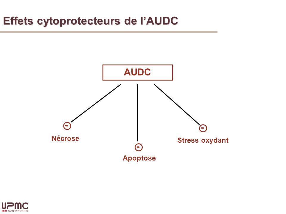 Effets cytoprotecteurs de lAUDC AUDC Apoptose Nécrose Stress oxydant- - -