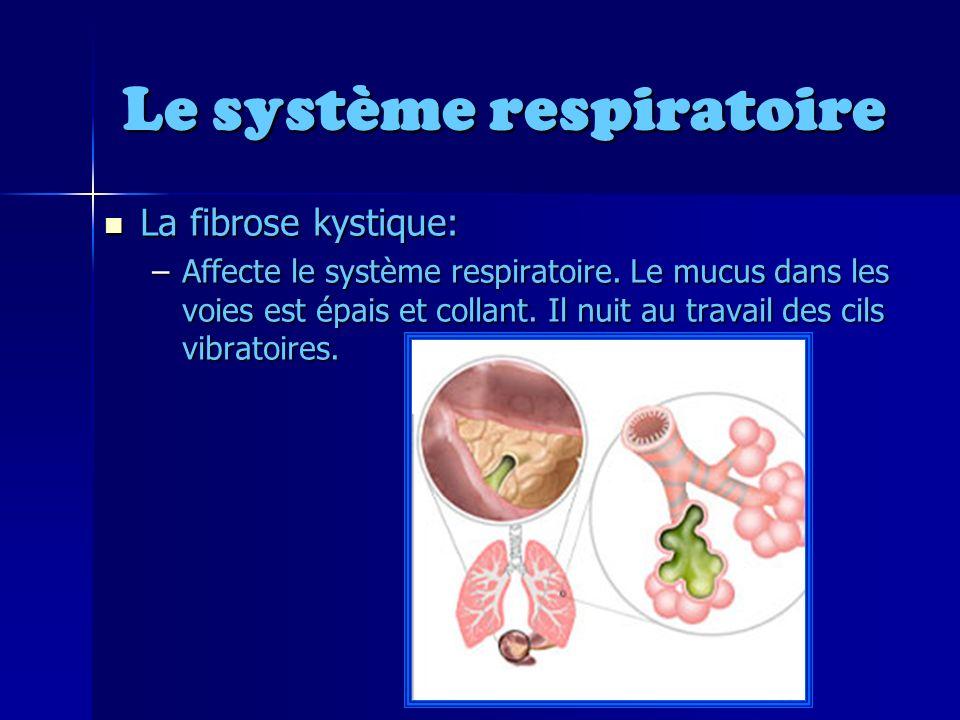 Le système respiratoire La fibrose kystique: La fibrose kystique: –Affecte le système respiratoire.