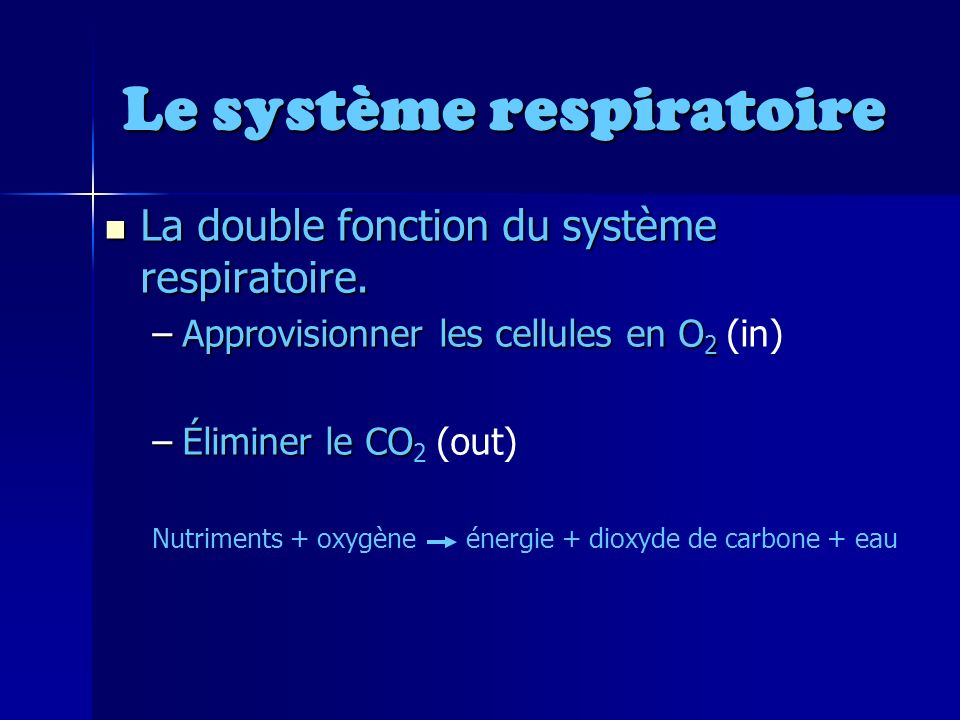 Le système respiratoire La double fonction du système respiratoire.