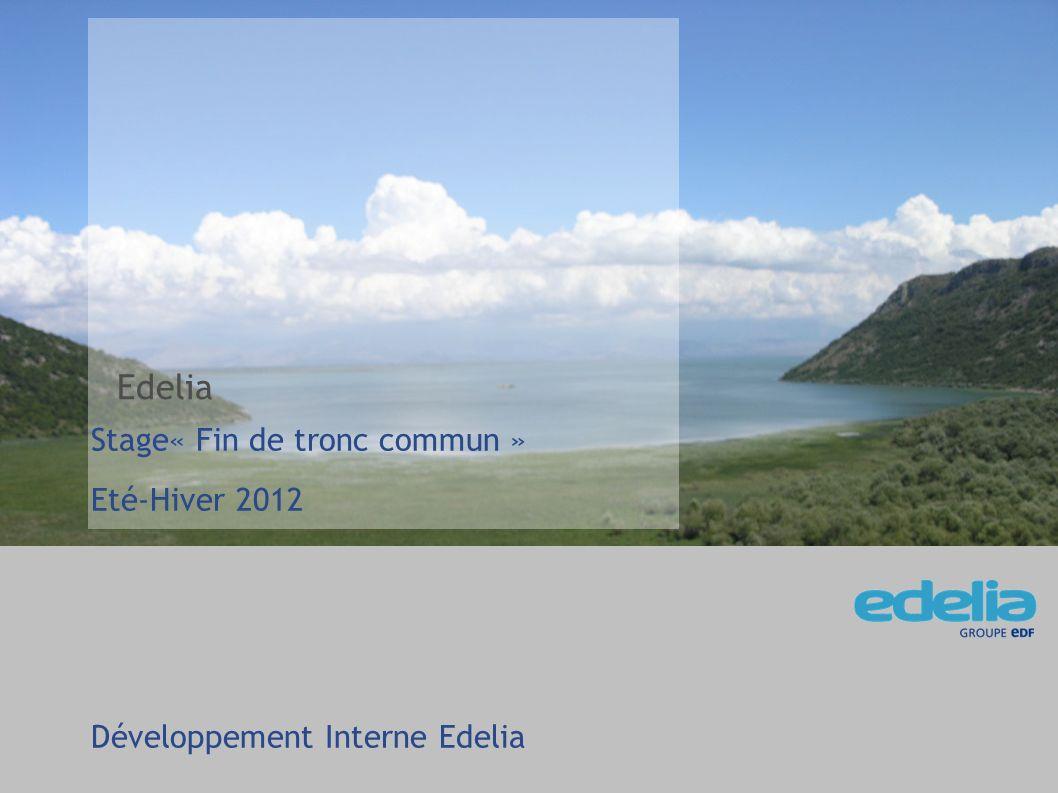 2 Contexte - Société Sujet de stage Exemples décran 05/02/2012 –MCO Edelia Stage de fin de tronc commun Reprise du Générateur de jeux de données de tests Monitoring de parc M2M