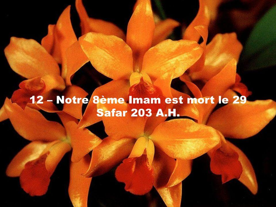 12 – Notre 8ème Imam est mort le 29 Safar 203 A.H.