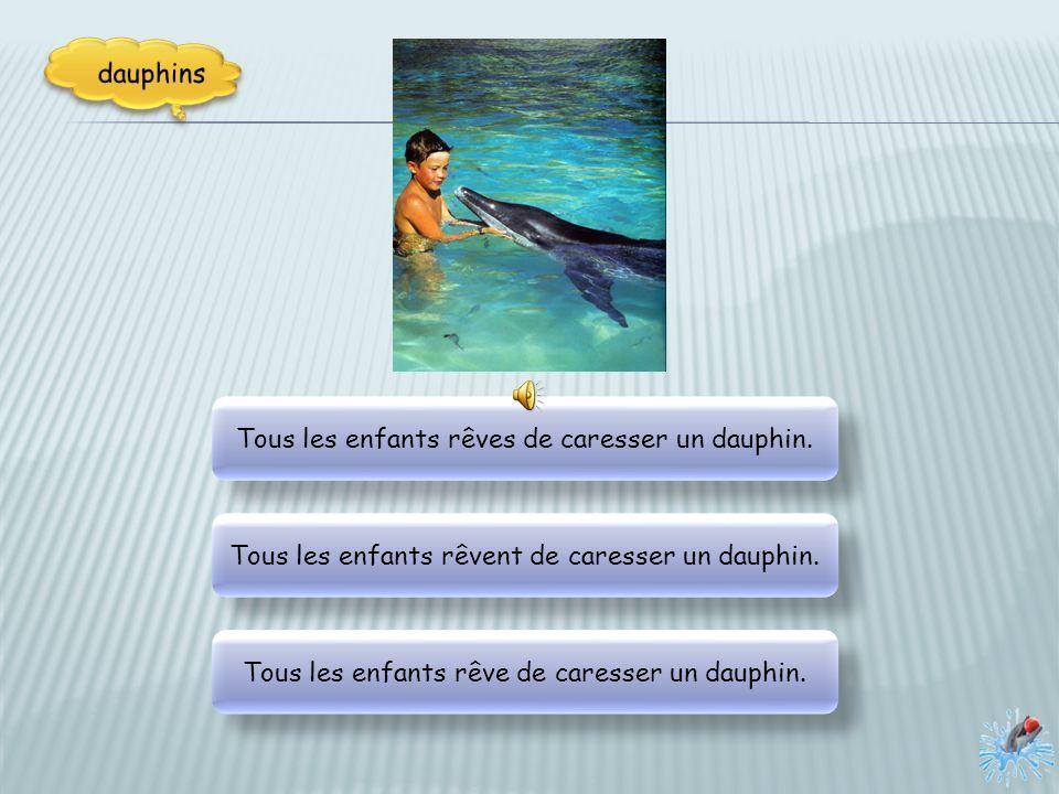 Tous les enfants rêves de caresser un dauphin.Tous les enfants rêvent de caresser un dauphin.
