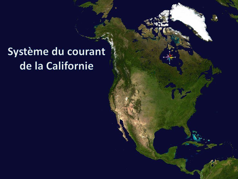 La sous section (38°N - 43°N) est choisie par rapport à la distribution interannuelle du merlu.