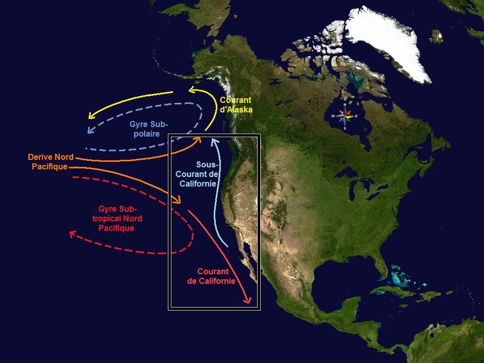 Lutilisation de bouées entre 150-600 m de profondeur a servi pour mètre en évidence le sous courant de Californie.