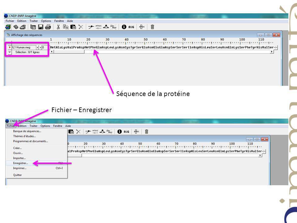 Séquence de la protéine Fichier – Enregistrer