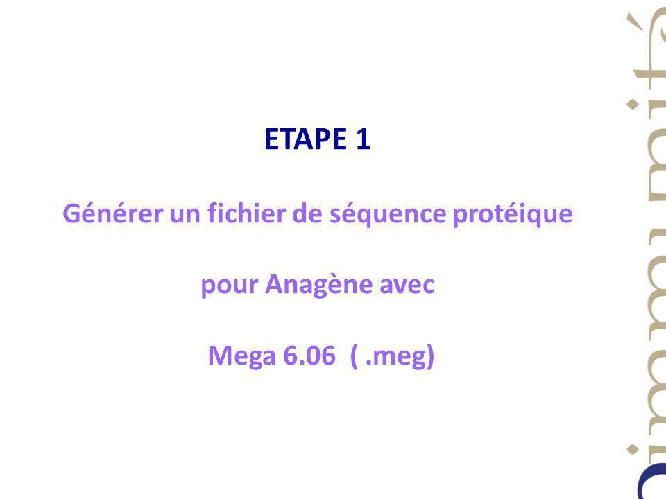 ETAPE 1 Générer un fichier de séquence protéique pour Anagène avec Mega 6.06 (.meg)