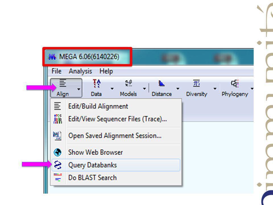Une nouvelle fenêtre souvre et donne accès directement au site NCBI sur lequel va seffectuer la recherche de la séquence protéique