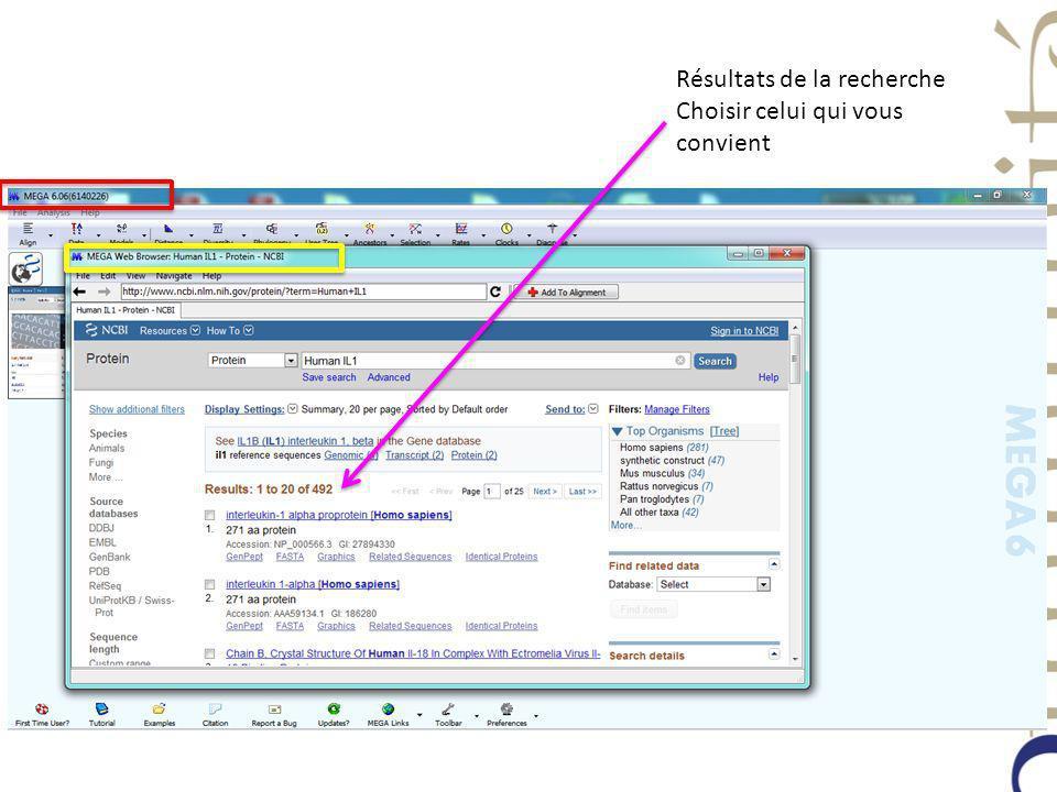 Dans Display Setting, choisir le format FASTA (Text) Séquence en fin de page