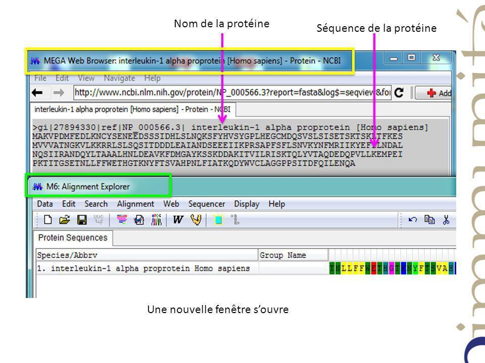 Nom de la protéine Séquence de la protéine Une nouvelle fenêtre souvre