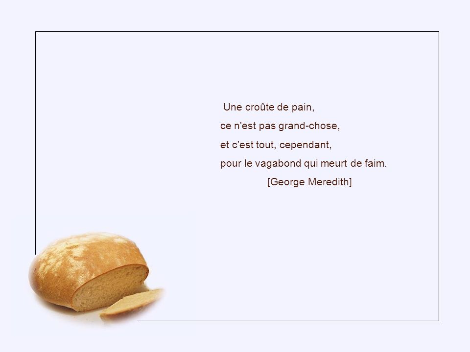 L amour est à l homme ce que le gril est au pain rassis.