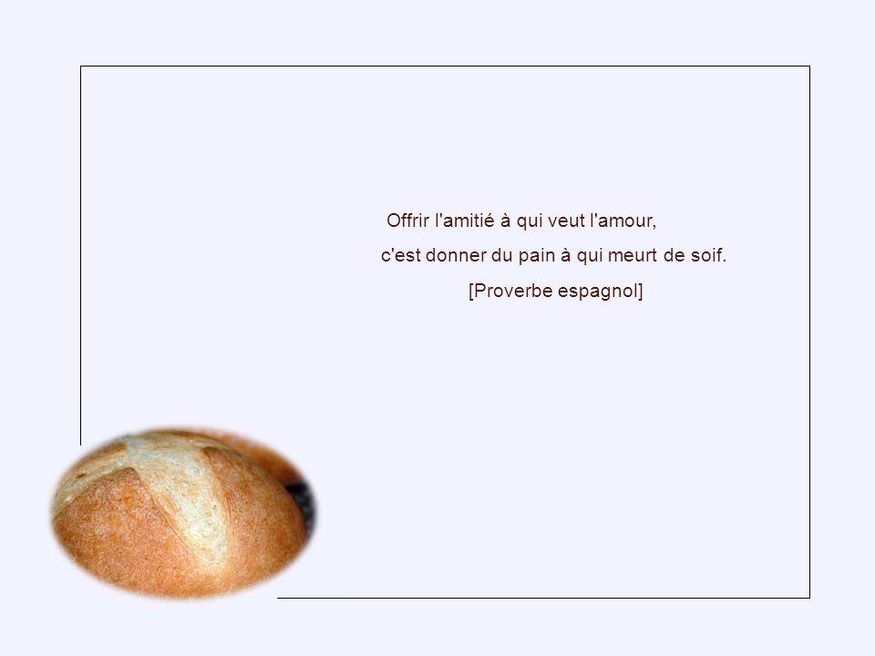 Sage est l'homme qui, ayant deux pains, en vend un pour acheter un lys. [Proverbe chinois]