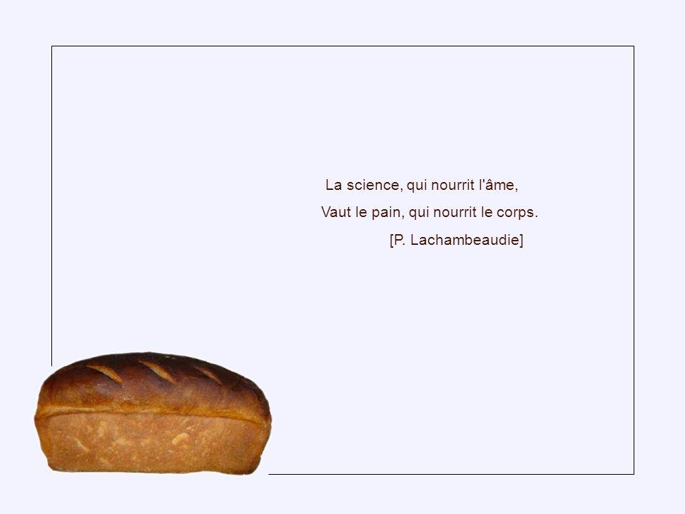 Celui qui laboure la terre sera rassasié de pain, mais celui qui aime l oisiveté sera dans une profonde indigence.