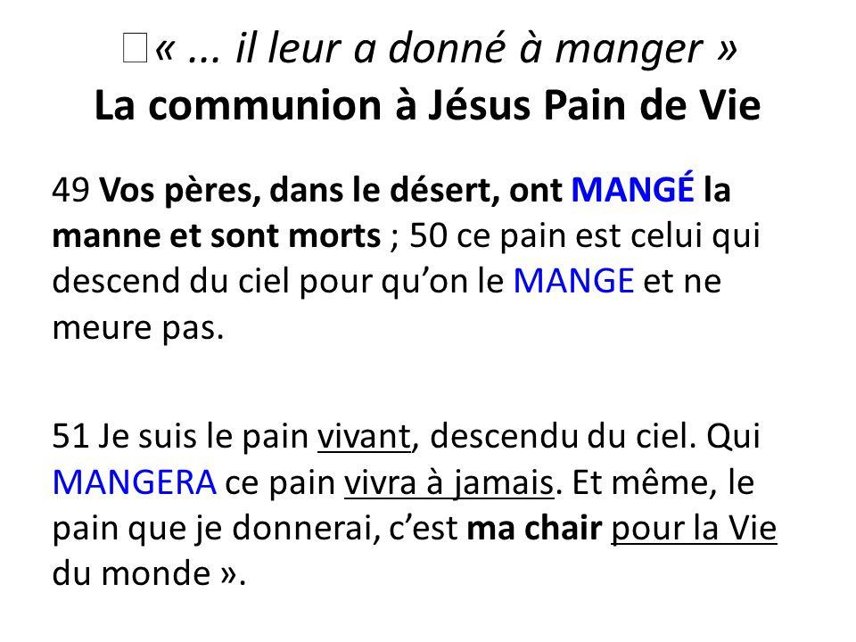 «... il leur a donné à manger » La communion à Jésus Pain de Vie 49 Vos pères, dans le désert, ont MANGÉ la manne et sont morts ; 50 ce pain est celui