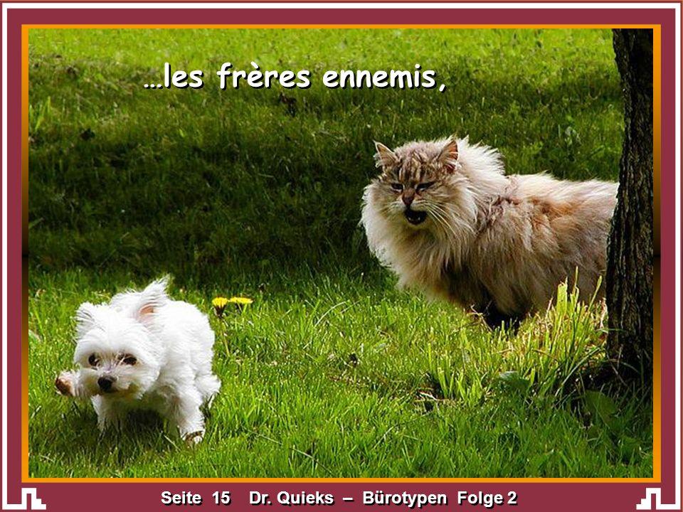 Seite 15 Dr. Quieks – Bürotypen Folge 2 …les frères ennemis,