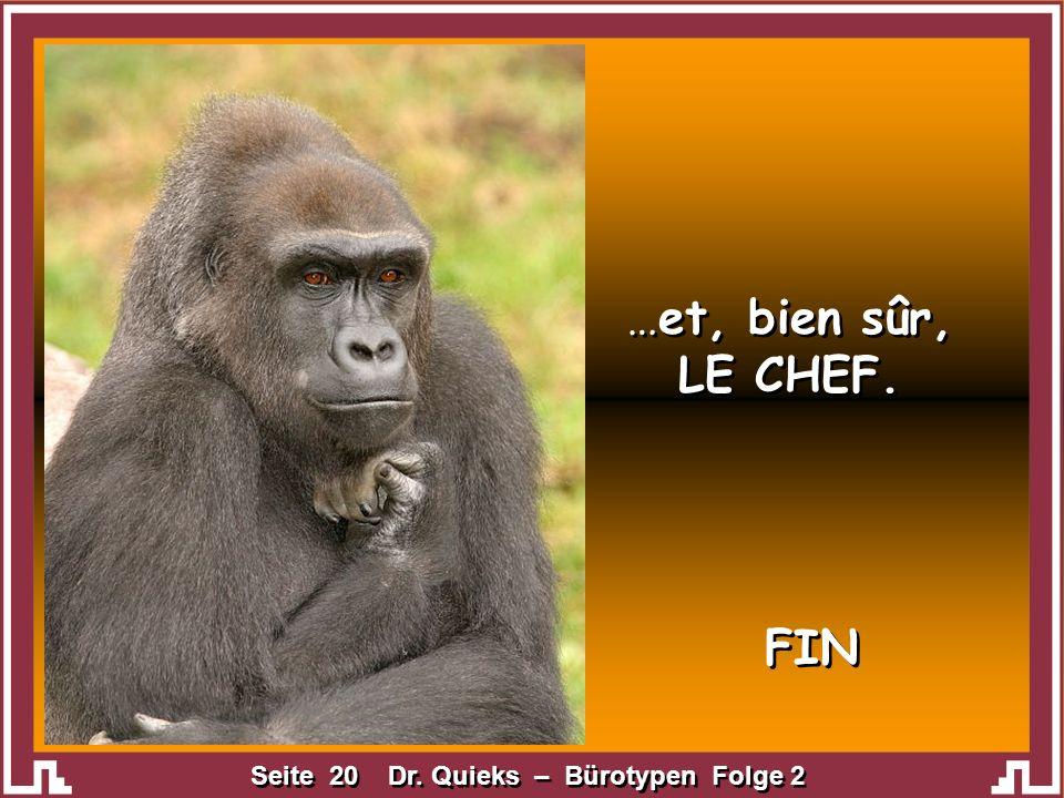 Seite 20 Dr. Quieks – Bürotypen Folge 2 …et, bien sûr, LE CHEF. …et, bien sûr, LE CHEF. FIN