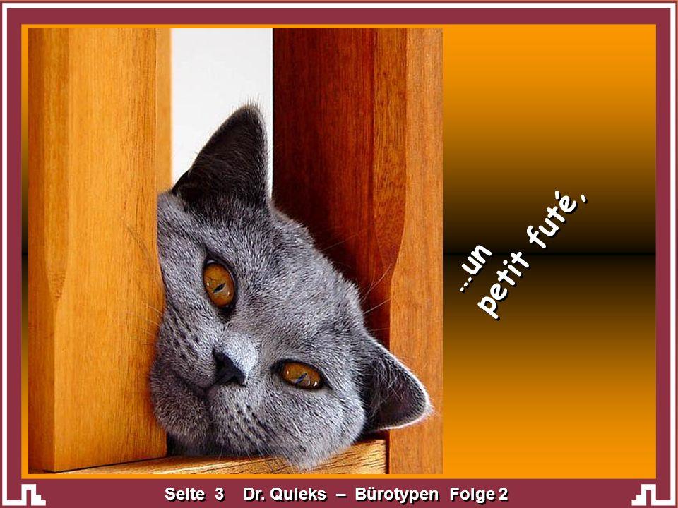 Seite 4 Dr. Quieks – Bürotypen Folge 2 …celui qui a de drôles de fréquentations,