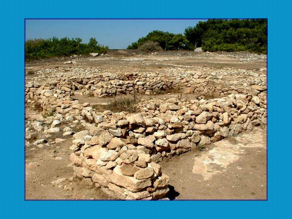 Au cours de la promenade, nous croisons plusieurs sites dimplantation de village gaulois.