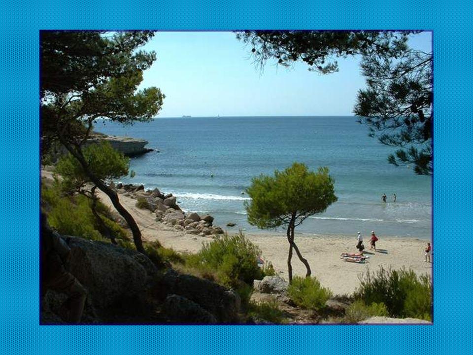 La plage Sainte-Croix présente la caractéristique doffrir quatre types de sols : - les brèches doligocène, conglomérats de blocs déplacés et cimentés naturellement, - les couches de glissement en masse sur un versant de la partie superficielle du sol gorgée deau, - la dune fossile, sable calcaire jaune recouvert dune croûte dun centimètre, - un versant argileux.
