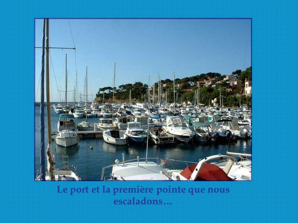 Du port de Carry- le-Rouet, nous empruntons le sentier du Lézard, bien aménagé, en bordure de la côte, souvent ombragé, avec beaucoup de marches montantes ou descendantes…