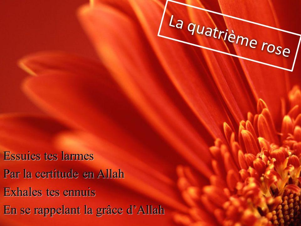 Essuies tes larmes Par la certitude en Allah Exhales tes ennuis En se rappelant la grâce dAllah La quatrième rose