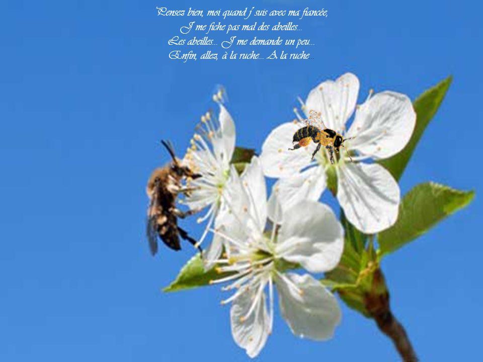 Heureusement que c´est pas demain la veille Que les femmes deviendront abeilles. Dans ce cas, je dors sur mes deux oreilles Et je dis miel aux petites