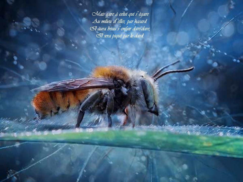 Bzz, bzz, bzz, Bzz, bzz, bzz... les abeilles! Bzz, bzz, bzz, Bzz, bzz, bzz... les abeilles!