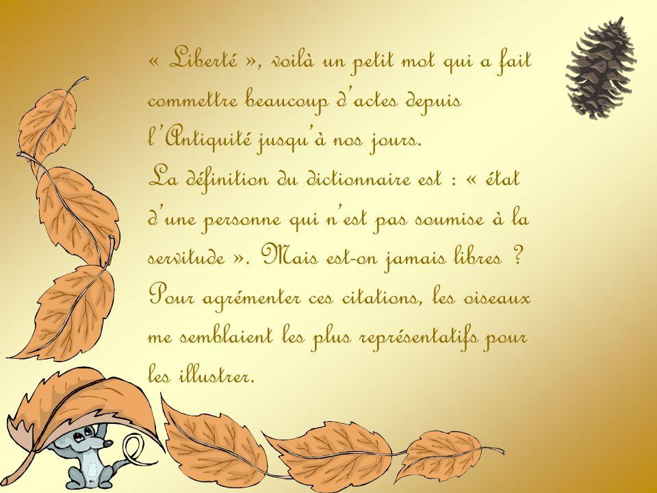 La liberté, cest la liberté daimer en ayant en soi lénergie de se donner. François Varillon.