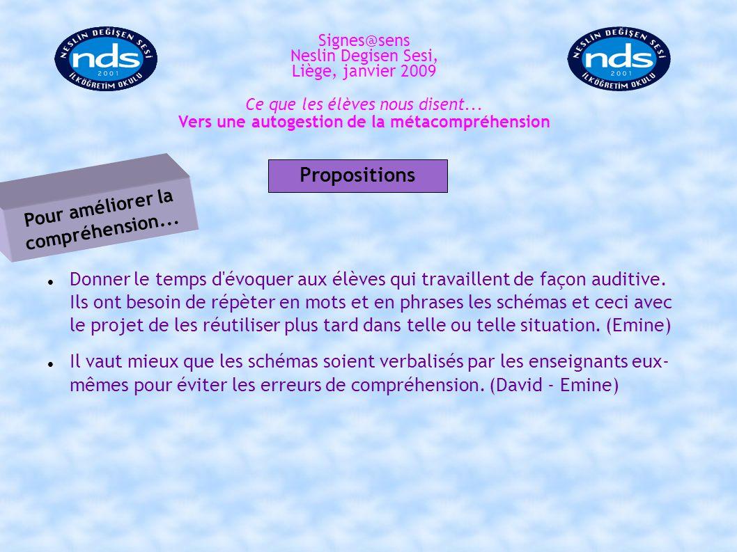 Signes@sens Neslin Degisen Sesi, Liège, janvier 2009 Signes@sens Neslin Degisen Sesi, Liège, janvier 2009 Merci!
