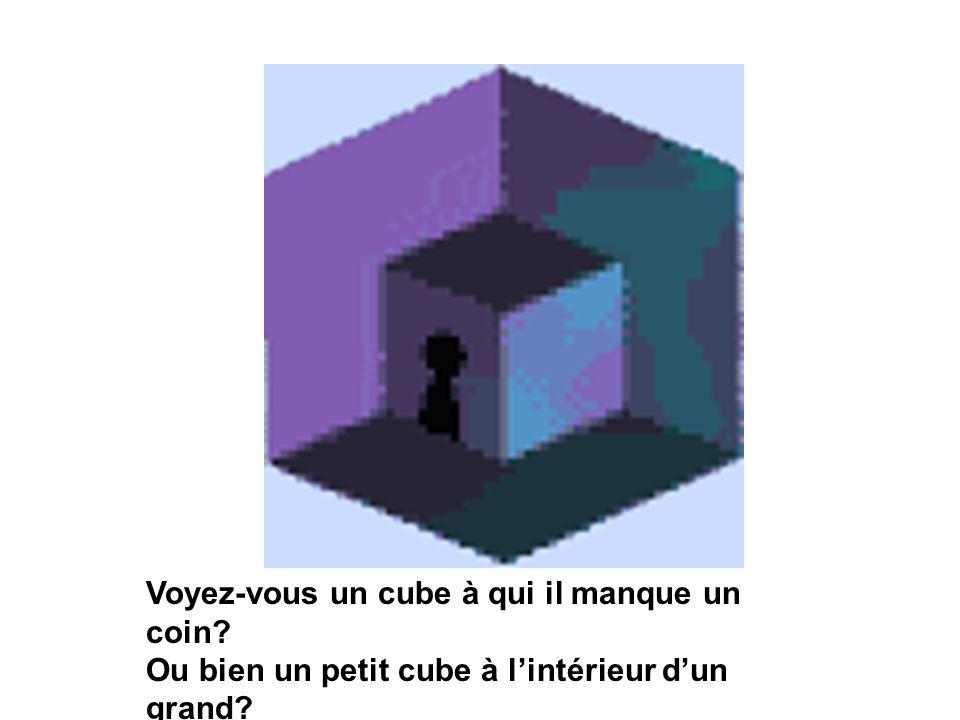 Voyez-vous un cube à qui il manque un coin? Ou bien un petit cube à lintérieur dun grand?