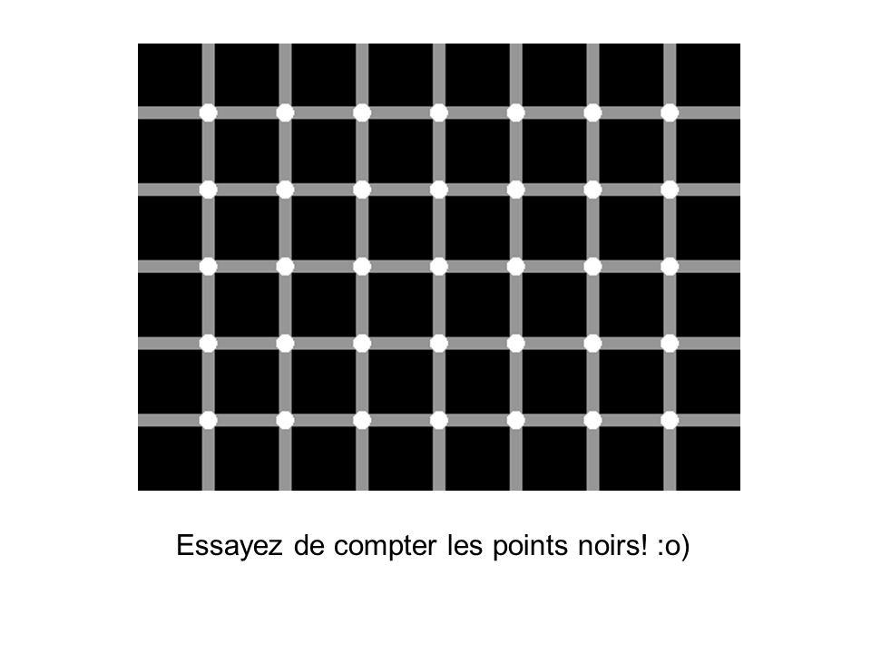 Essayez de compter les points noirs! :o)
