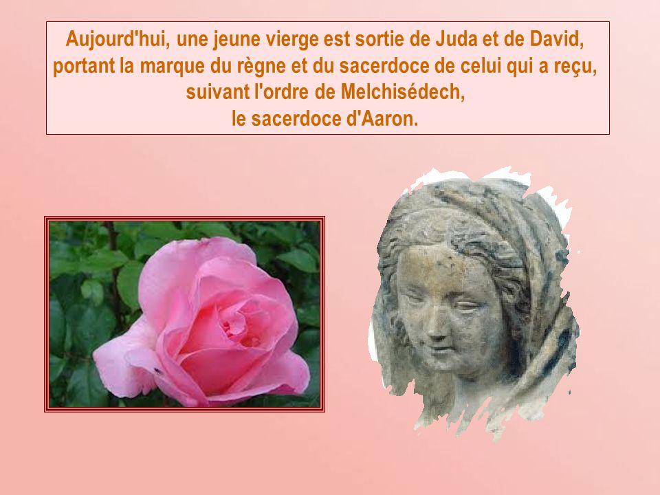 Aujourd hui, une jeune vierge est sortie de Juda et de David, portant la marque du règne et du sacerdoce de celui qui a reçu, suivant l ordre de Melchisédech, le sacerdoce d Aaron.