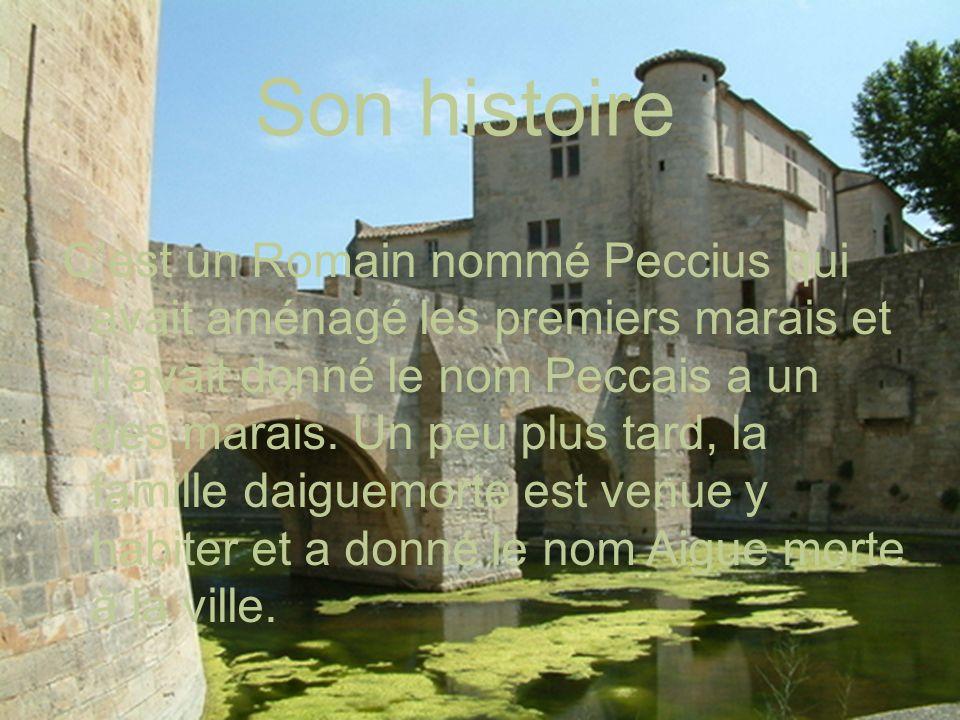 Année de la construction: 1240 Emplacement: Languedoc-Roussillon, France Population: 7891 habitants La superficie: 5778 Km La langue parlée est le français