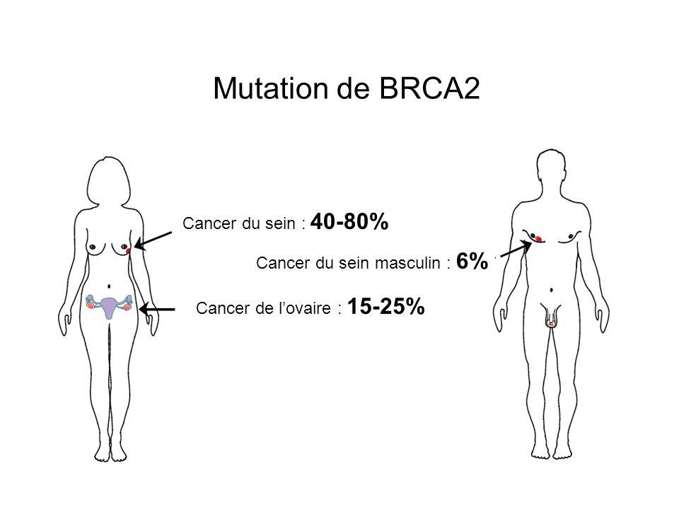 Histoire familiale Pas de mutation identifiée Calcul du risque (score ou logiciel) RA > 20 %
