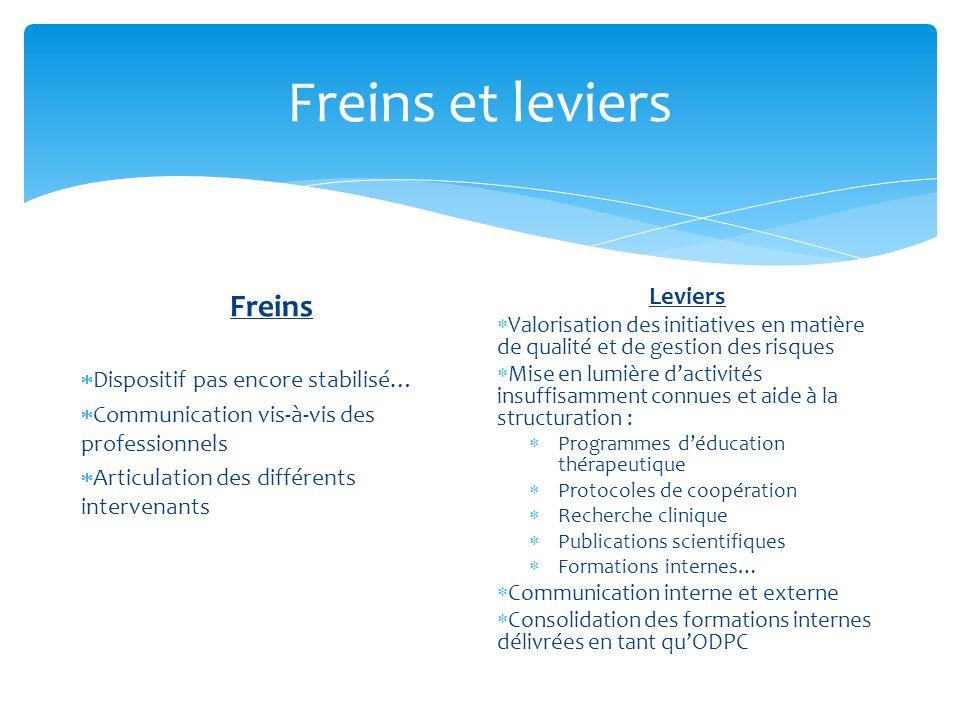 Freins et leviers Freins Dispositif pas encore stabilisé… Communication vis-à-vis des professionnels Articulation des différents intervenants Leviers