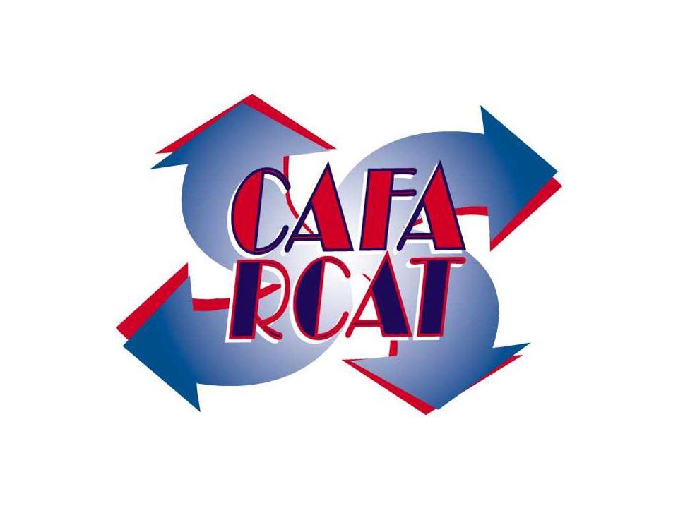 Printemps et été 2000 Salaires de 1 employé subventionné par DRHCSalaires de 1 employé subventionné par DRHC Frais de pigistes et frais opérationnels couverts par le CAPFrais de pigistes et frais opérationnels couverts par le CAP Subvention du SNA pour une recherche-action sur les services du CAFA - Phase II (suite)Subvention du SNA pour une recherche-action sur les services du CAFA - Phase II (suite) Contribution en nature (léquivalent de 0,75 salaire fourni en ressources humaines) de lOntario au travailContribution en nature (léquivalent de 0,75 salaire fourni en ressources humaines) de lOntario au travail Contribution en nature (prêt de locaux) du Centre déducation aux adultesContribution en nature (prêt de locaux) du Centre déducation aux adultes Historique du financement (suite)