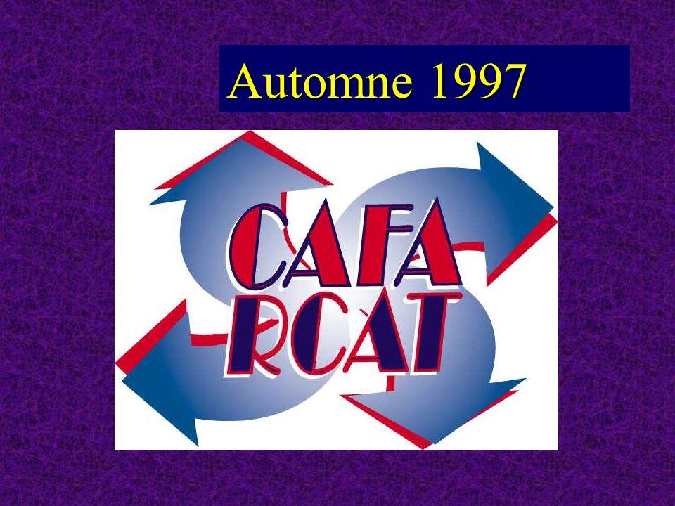 Deuxième année de fonctionnement du CAFA novembre 1998 à octobre 1999 DESO 181 76% Transition 31 13% Total des inscriptions : 239 239 Autres 2 0,8% Alpha 25 10% Répartition des inscriptions