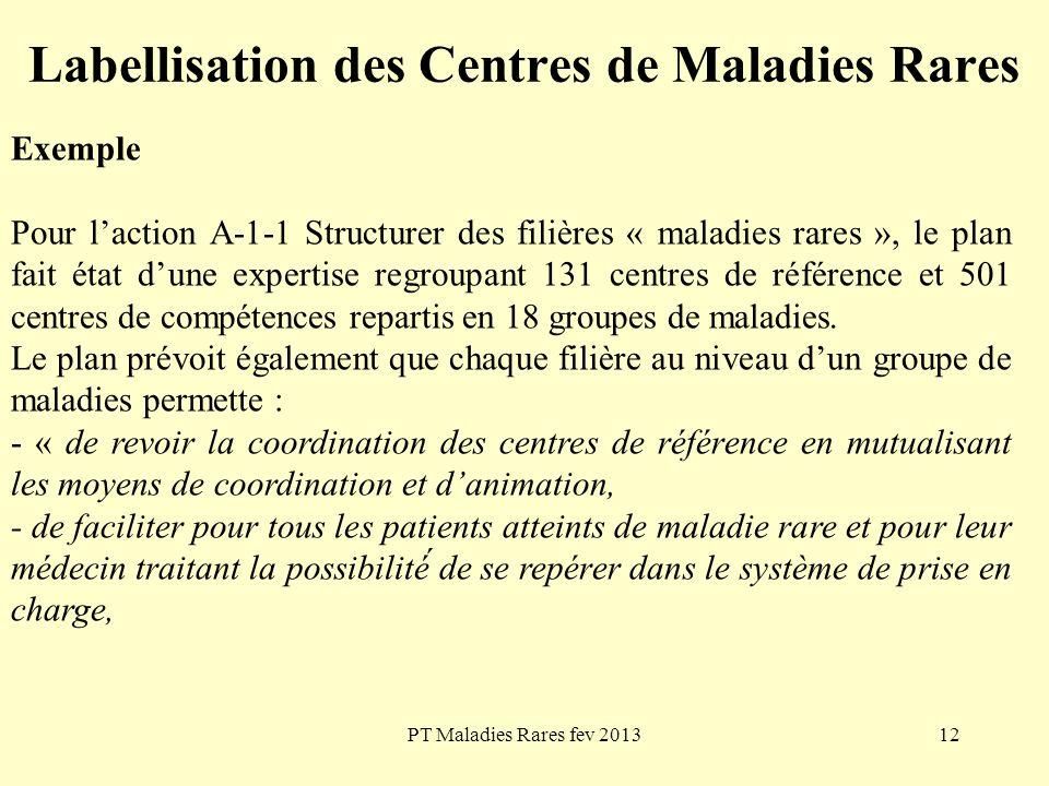 PT Maladies Rares fev 201312 Labellisation des Centres de Maladies Rares Exemple Pour laction A-1-1 Structurer des filières « maladies rares », le pla